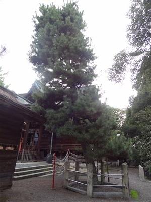 総社大神宮5