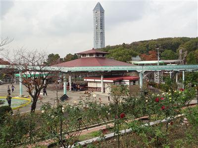東山植物園のバラ園2