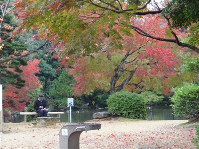東山動物園の紅葉1