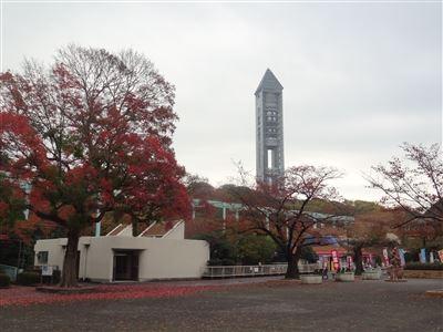 東山動物園の紅葉2