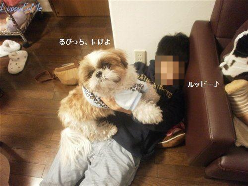 LuppyK君2
