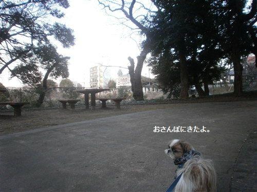201202047.jpg