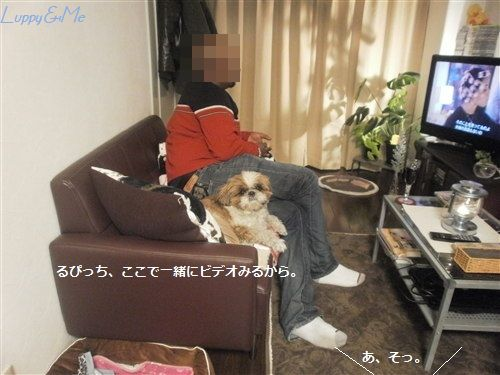 PC232439.jpg