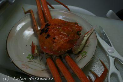雑炊の材料になった蟹