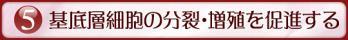 tv-dellmatan-sayo5[1]