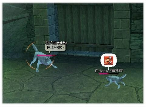 mabinogi_2011_10_14_008.jpg