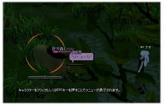 mabinogi_2011_10_14_011.jpg