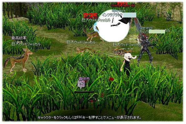 mabinogi_2011_10_14_012.jpg