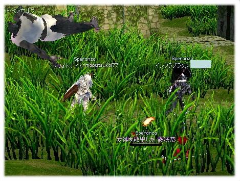 mabinogi_2011_10_14_013.jpg