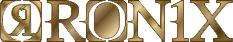09ronix_logo06.jpg