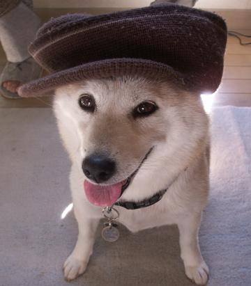 帽子マック