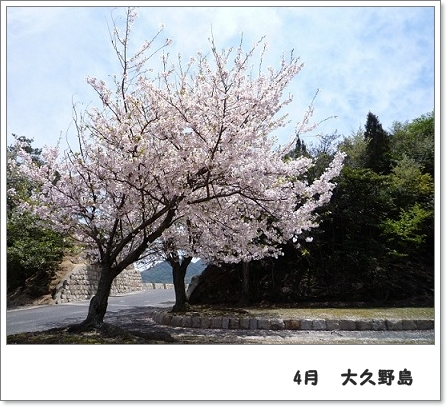 P10707461.jpg