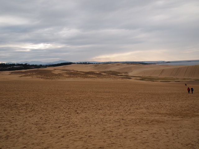 砂丘-001