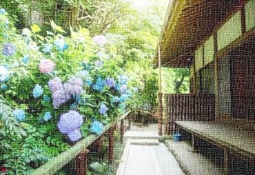 柔らかな庭