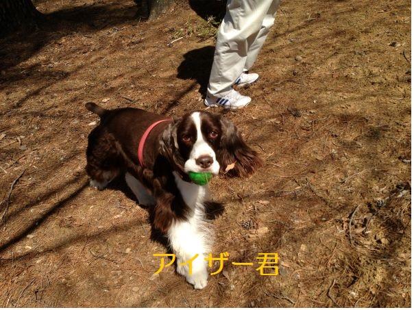 H25春清里①-3