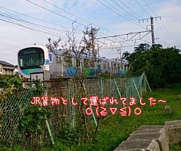 2014111122241303d.jpg
