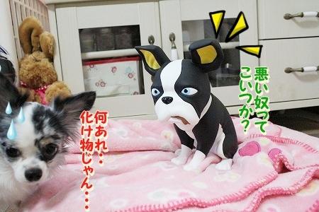 お兄ちゃん登場~♪  (5)