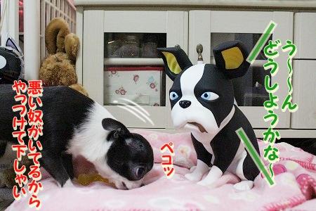 お兄ちゃん登場~♪  (2)