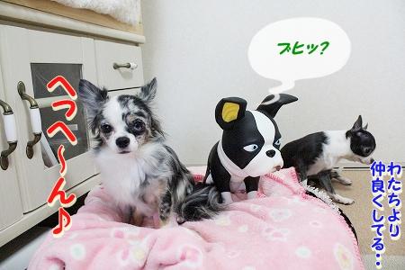 お兄ちゃん登場~♪  (10)