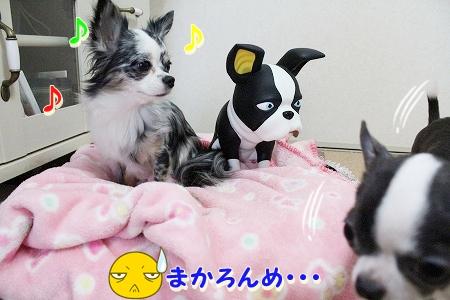お兄ちゃん登場~♪  (11)
