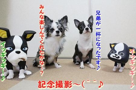 お兄ちゃん登場~♪  (19)