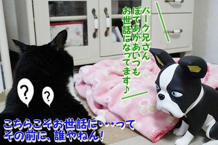 お兄ちゃん登場~♪  (13)