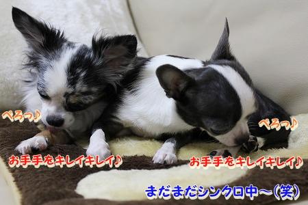 良く寝た~♪  (5)