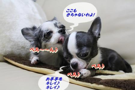 良く寝た~♪  (7)