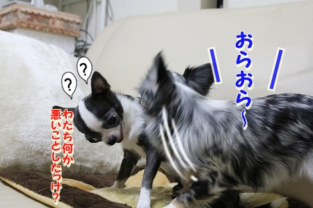バトル! (2)