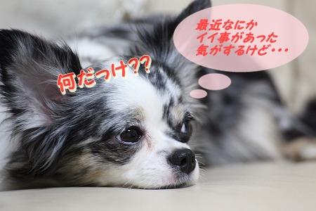 何だっけ~? (1.3)