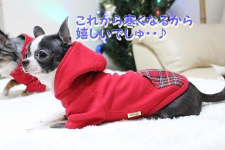 クリスマスカラー♪ (8)