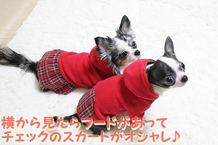 クリスマスカラー♪ (6)
