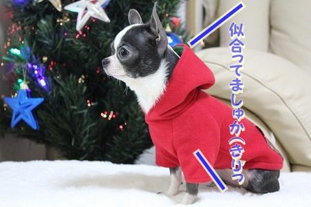 クリスマスカラー♪ (1.1)
