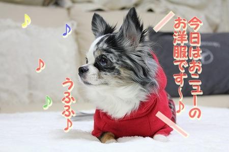 クリスマスカラー♪ (1)