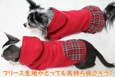 クリスマスカラー♪ (12)