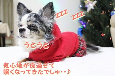 クリスマスカラー♪ (9)