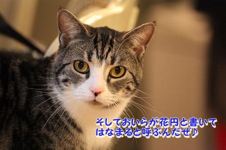 久々~♪ (2)