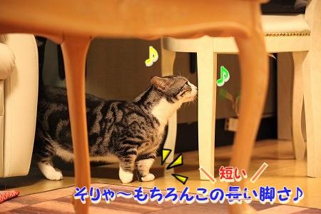 久々~♪ (3)