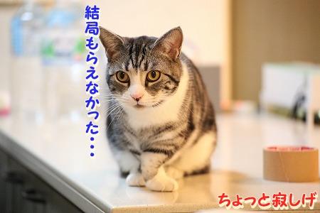 久々~♪ (28)