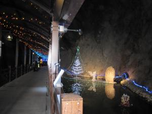 江の島 岩屋 クリスマス