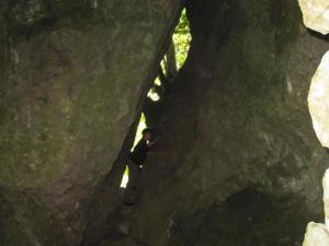 韓かま神社 岩