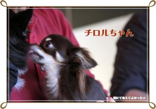 187_20111031215938.jpg