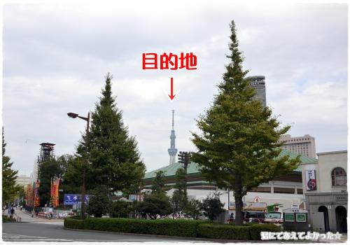 485_20111012200957.jpg