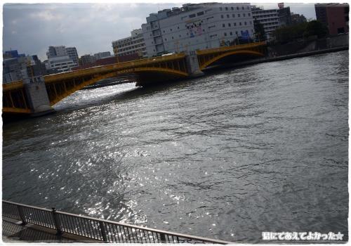508_20111012201047.jpg