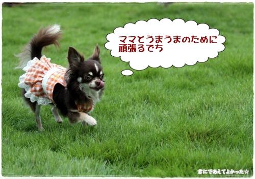 624_20110925214832.jpg