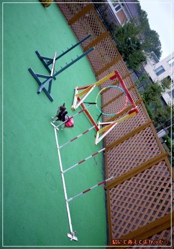 638_20111023210500.jpg