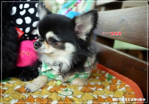 740_20111108221417.jpg