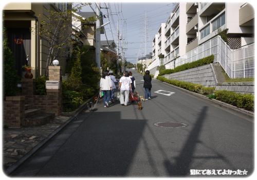 764_20111112213635.jpg