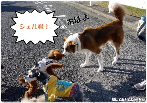 770_20111130184450.jpg