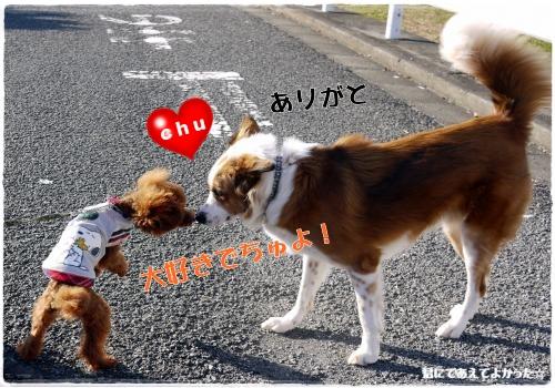 777_20111130184450.jpg